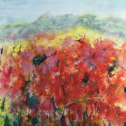 Poppies by Sally McIver