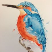 Kingfisher by Candida Hackney