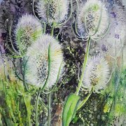 Tangled Teasles by Lindsay Gregory