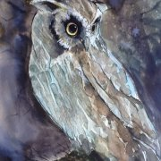 Owl Gazing by Madeleine Fletcher